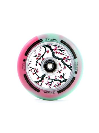 Lucky Darcy Evans Wheels