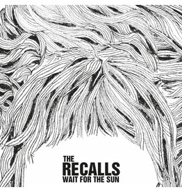 Schallplatte - the recalls