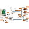 "Verdeler  knelkoppeling 3/4"" x 16-2.0 kraantjes 3 uitg blauw /verdeler knel– waterleiding / meerlagenbuis – CV & Sanitair - messing"