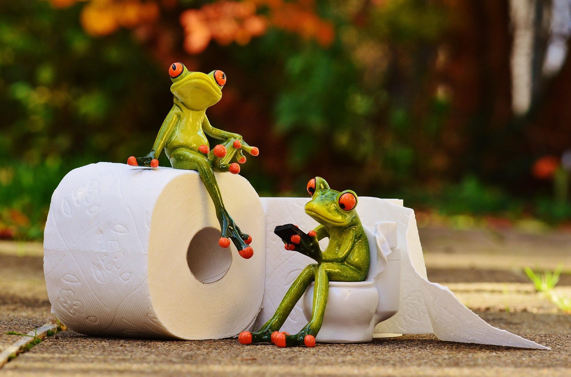 Hoe kies je de juiste toiletpapier dispenser voor jouw zaak?