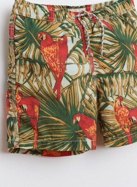 Bellerose zwembroek papegaai