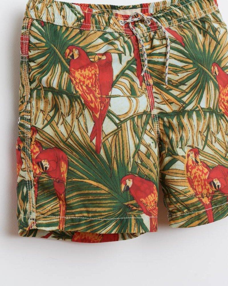 Bellerose maillot de bain perroquet