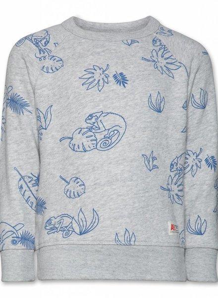 AO76 sweater kameleon grijs