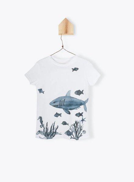Arsène et les Pipelettes T-shirt fishes