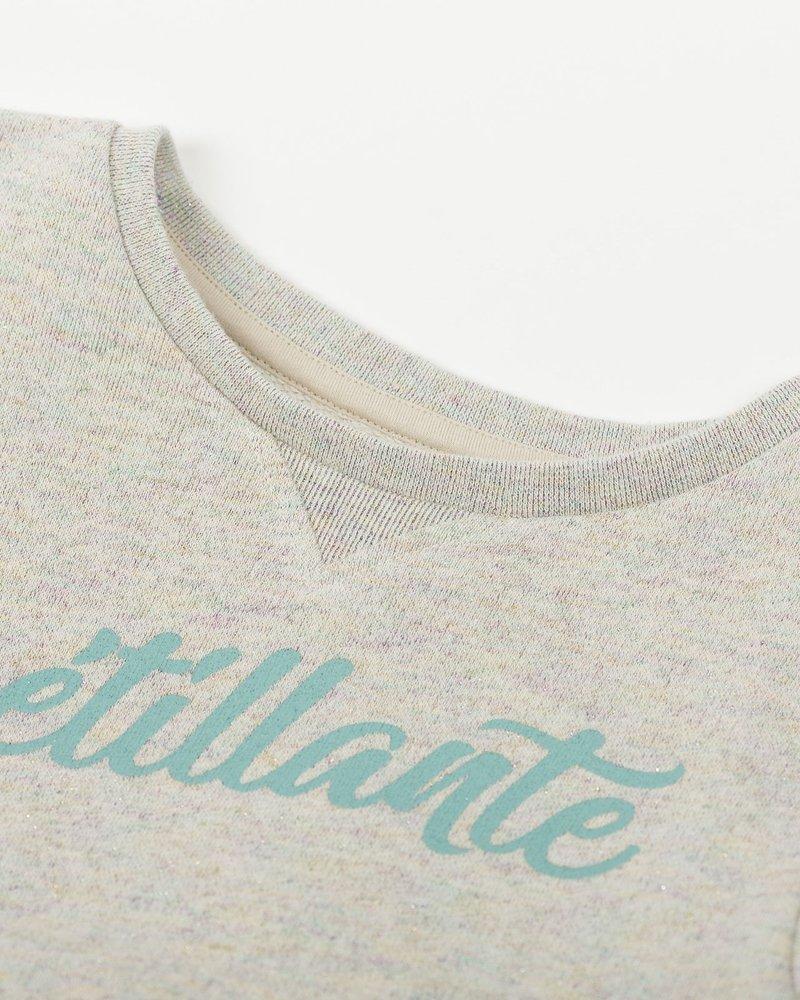 Arsène et les Pipelettes Arsène et les Pipelettes sweater Sweat Molelton Lurex Pétillante Multicolor