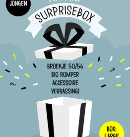 Surprisebox – Large – Jongen