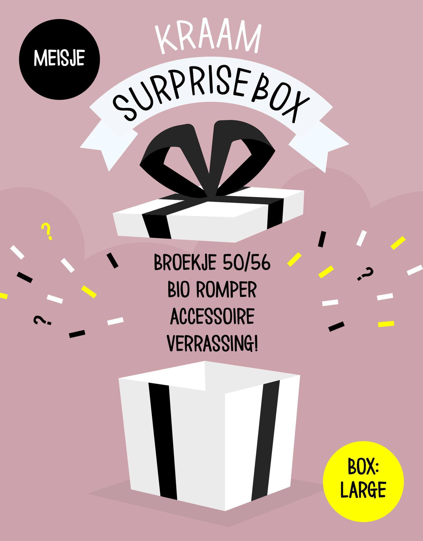 tinymoon Surprisebox – Large – Meisje