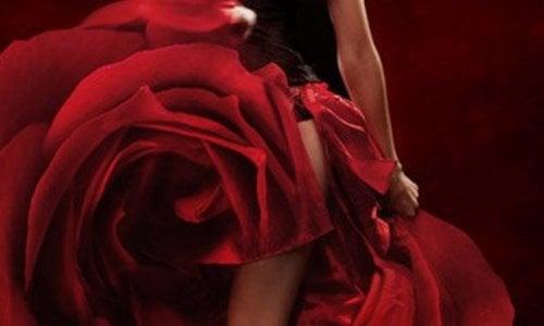 Goedkope Gala jurken