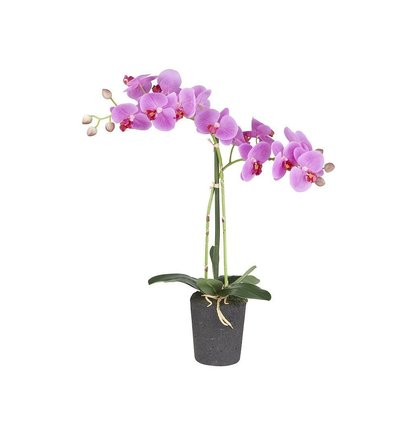 Multi Meubel Kunstplant Orchidee /  Phalaenopsis 2-tak roze H53cm - Bloeiende Kunstplanten