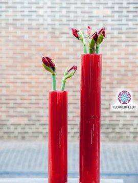 DutZ Zylinder vase tall red