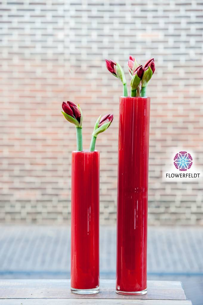 DutZ Cylinder vase tall red
