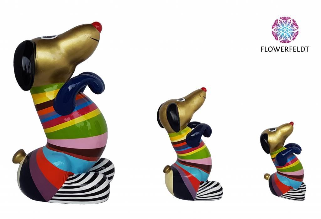 Niloc Pagen Sitting Hot Dog Multi Color Gold