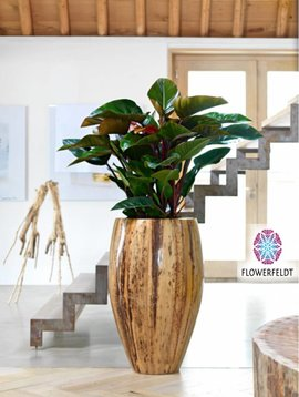 Plant pot Banana