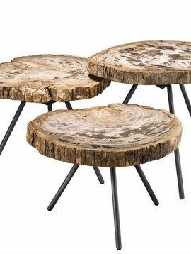 Eichholtz Tree trunk table De Soto