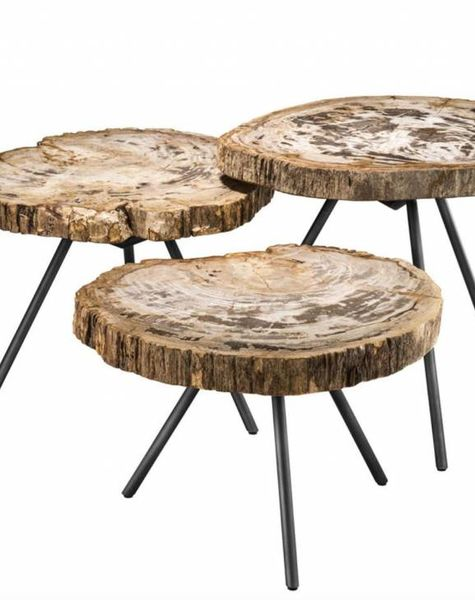 Eichholtz Tree trunk coffee table