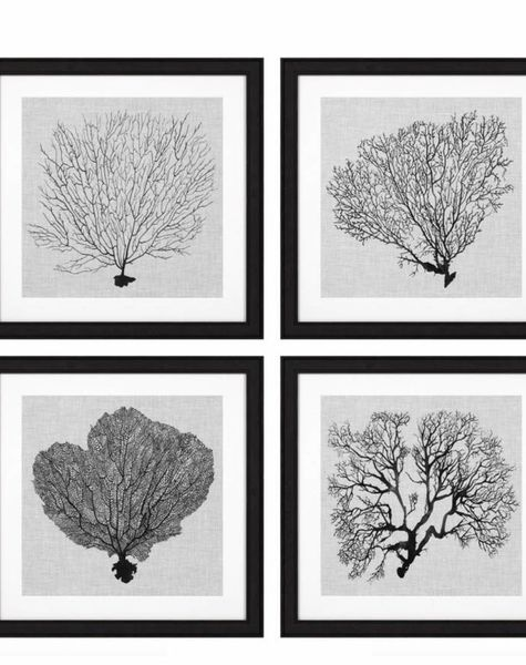 Eichholtz Prints Shadow Sea Fans