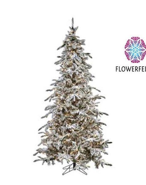 Goodwill Kerstboom met sneeuw - H300 cm