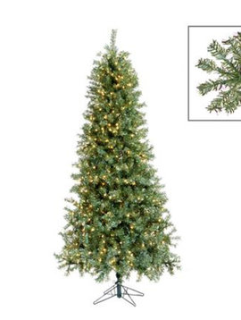 Goodwill Christmas trees 225 cm