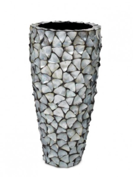 Shell vases Cannes