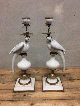 Papegaai kandelaar wit
