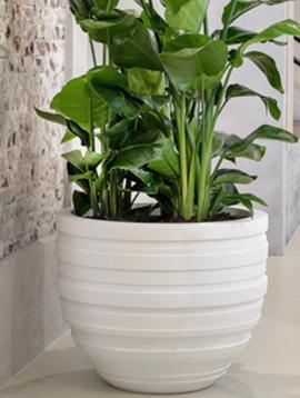 Flower pot M Sydney