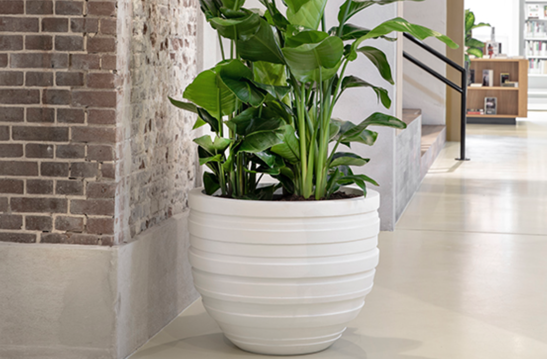 Flower pot XL Sydney - D110 cm