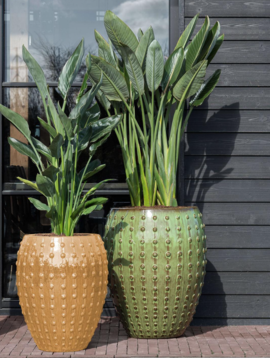 Green plant pot Reykjavik