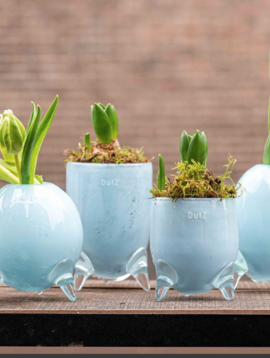 DutZ Blaue Vasen Evita