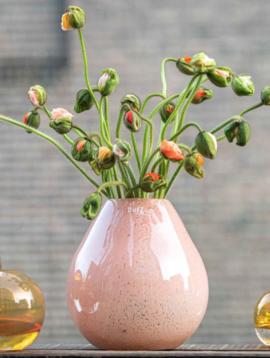 DutZ Rose Vase Druba apricot