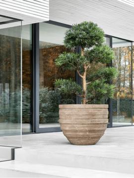 Large garden pot Beijing