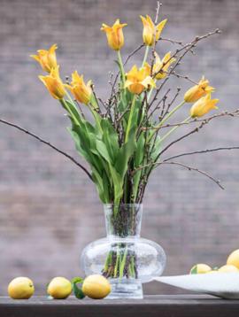 DutZ Vase clear bubbles