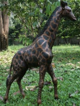 Giraf beeld Kayin