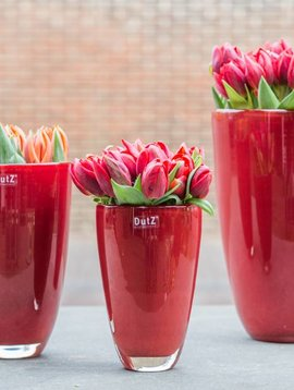 DutZ Blumenvasen rot