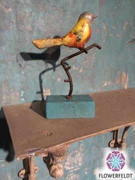 Vogeltje bont gekleurd