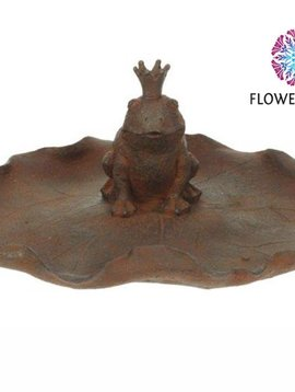 Frog king in pond