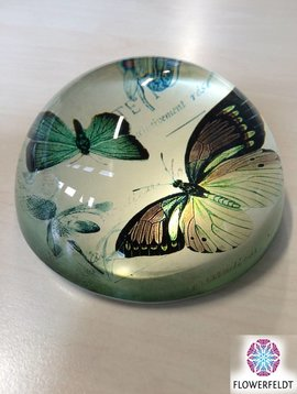 Paperweight butterfly
