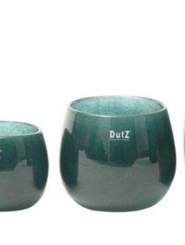 DutZ Potten pine tree