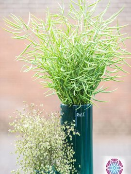 DutZ Zylinder vase tall pine tree
