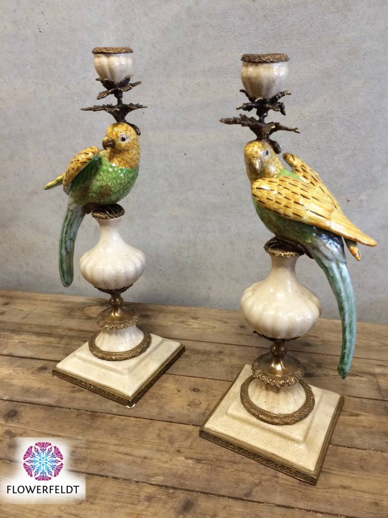 Parrot candle holder - H48 cm