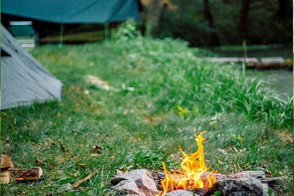 Recreatie & Campinggras