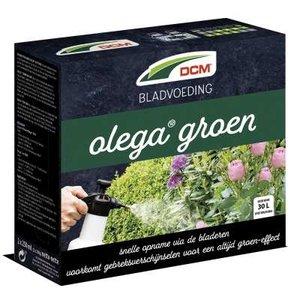 DCM Olega Groen Bladvoeding 250 ml