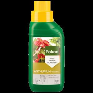 Pokon Anthurium Voeding 250ml