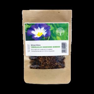 MRS Seeds & Mixtures Convolvulus Dagschone gemengd - Driekleurige Winde