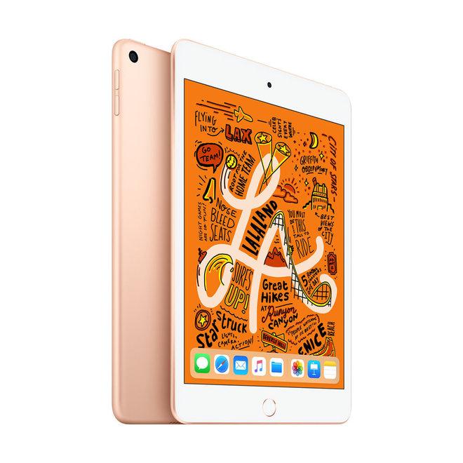 iPad Mini 256 GB