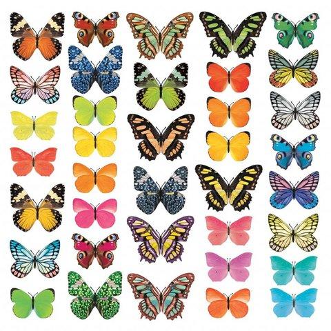 Decowall muursticker kinderkamer vlinders Vivid Butterflies