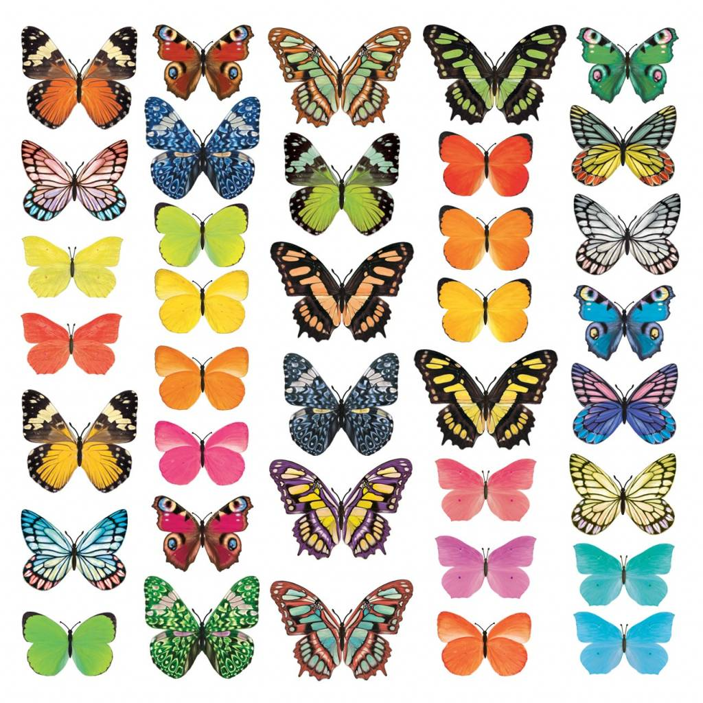 Vlinder Decoratie Babykamer.Decowall Muursticker Vlinders Vivid Butterflies Kidzsupplies