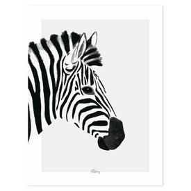 Lilipinso Lilipinso poster zebra