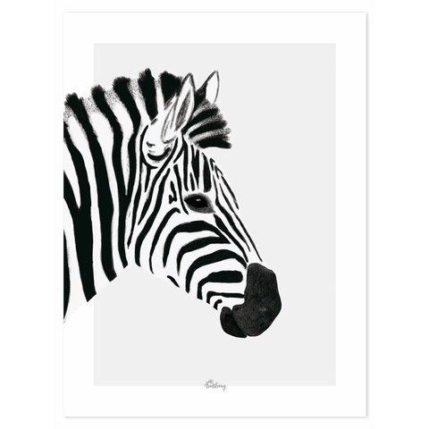 Lilipinso poster zebra