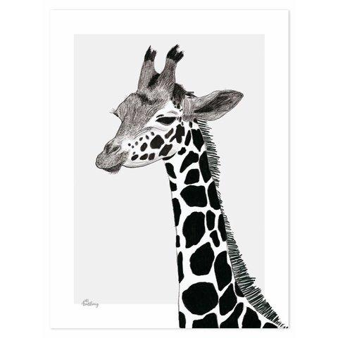 Lilipinso poster kinderkamer giraffe