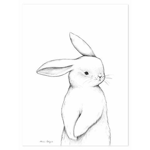Lilipinso poster kinderkamer konijn